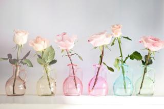 Roses In Vases para Sony Ericsson XPERIA PLAY