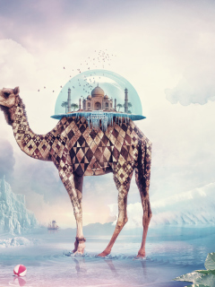Magical Camel Mobile Wallpaper for Samsung A687 Strive at VividScreen