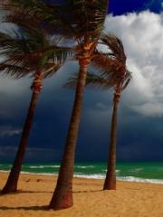 Beach Ani Villas, Anguilla para Nokia C2-01
