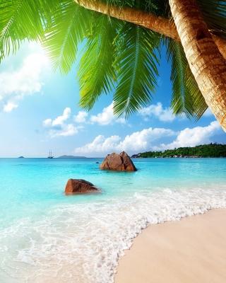 Punta Cana Beach per Nokia N8