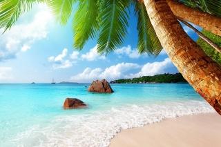 Punta Cana Beach para LG E400 Optimus L3