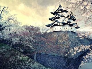 Hirosaki Castle Japan para Nokia X2-01