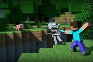 Minecraft Steve para Samsung 222 Ch@t