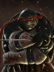 Teenage Mutant Ninja Turtles para Nokia C2-02