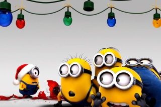 Despicable Me New Year para Samsung S5367 Galaxy Y TV