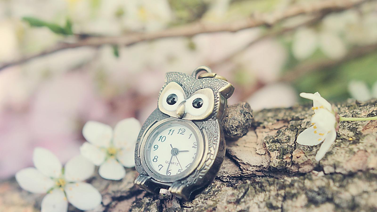 Vintage owl wallpaper - photo#16