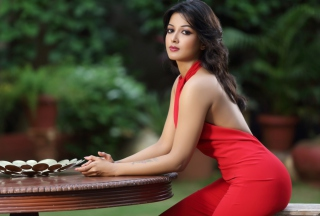 Catherine Tresa Bollywood para Samsung S5367 Galaxy Y TV