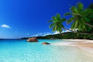 Orange Bay Jamaica
