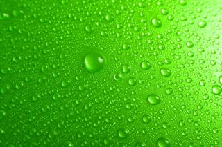 Green Water Drops para Nokia Asha 201