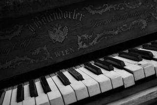 Vienna Piano for Huawei M865
