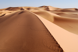 Desert Dunes In Angola And Namibia para Blackberry RIM Curve 9360