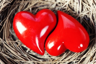 Heart In Nest