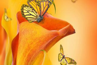 Beautiful Flower per Nokia Asha 302